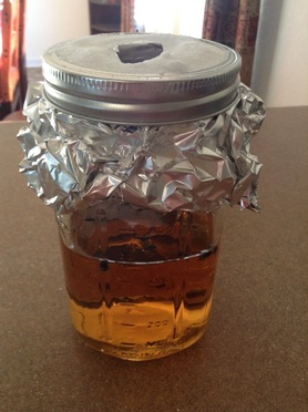 Apple vinegar fly trap